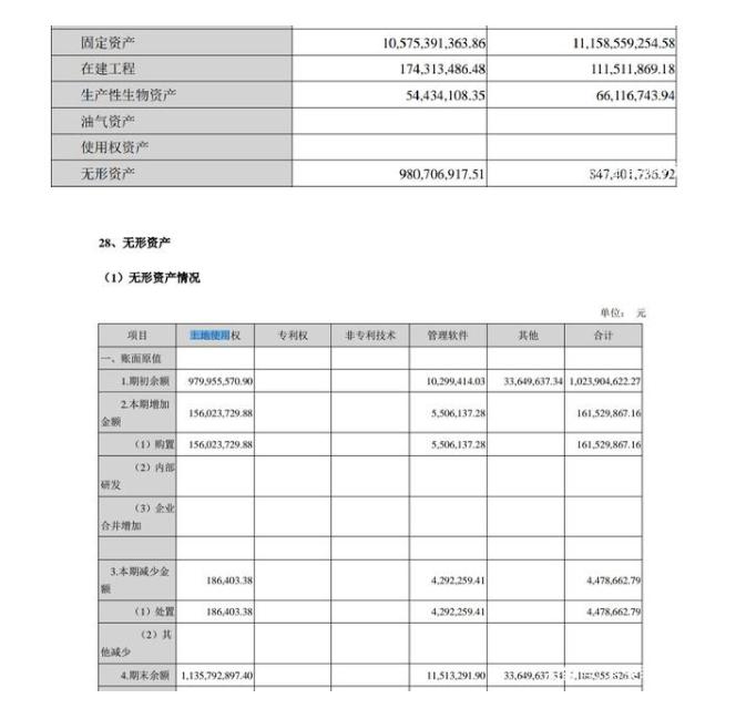 解读双汇发展2019年报之资产负债表