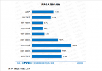 中国仅三成网民月收入在5000元以上 学生占比高达21.0%