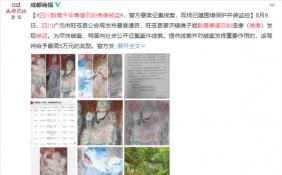 四川数尊千年摩崖石刻佛像被盗 距今有1000多年历史