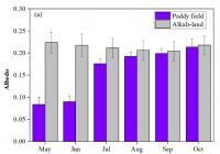 盐碱地改良种稻改变地表生物地球物理特征 有助于调节局地气候