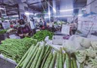"""本地菜出产量下滑外地蔬菜""""霸市"""" 武汉菜价或迎明显上涨"""